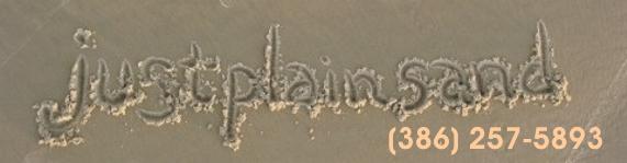 Sand Sculpting In Daytona Beach Florida