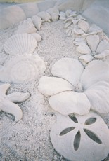 Flower and Shells Detail, Simple Things